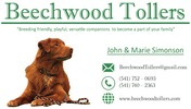"Beechwood Tollers - ""Breeding friendly, playful, versatile companions to become part of your family"""